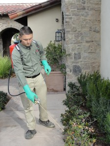 Lee performing pest control services at Westridge Valencia HOA