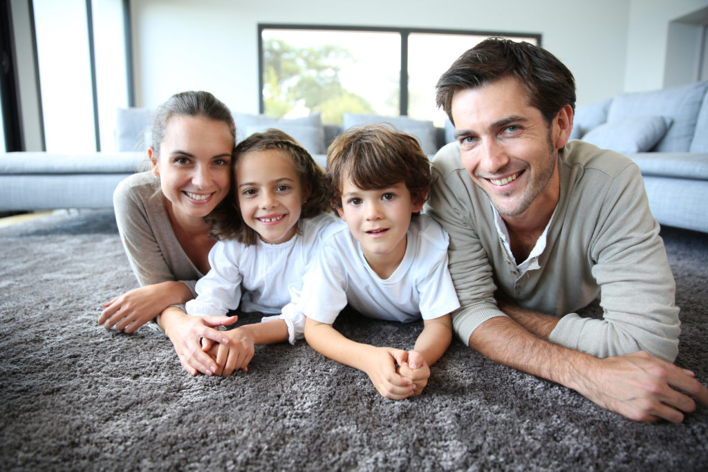 Are your carpets being eaten by carpet beetles